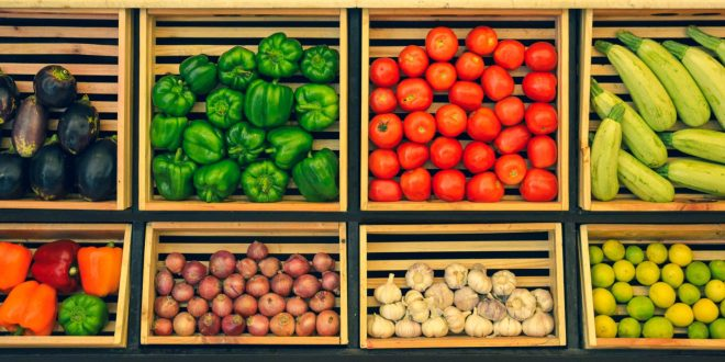Crea Pacha Verde conciencia en seguridad alimentaria