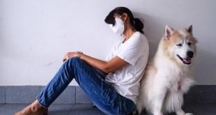 ¿Puede un animal tener COVID-19 y contagiar a las personas?