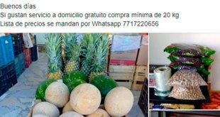 Central Abastos Pachuca venta en línea