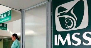 Puedes acceder al seguro del IMSS, ¿cuánto cuesta?