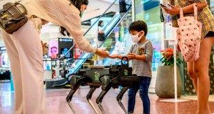 Un perro robot distribuye gel para las manos en centro comercial en Bangkok