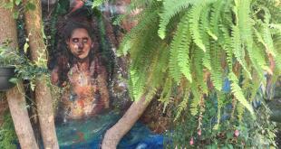Cultural Ciartes arte consciencia ambiental