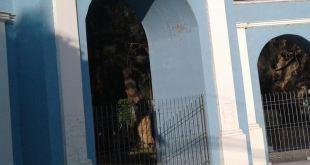 Reportan desaparición monos, águilas cocodrilo parque Ixmiquilpan