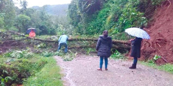 Reportan derrumbes municipios Hidalgo