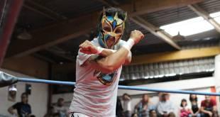 """""""Cuelga"""" luchador Caballero de Atena la máscara"""