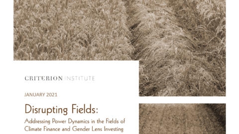 Disrupting Fields: Addressing Power Dynamics in the Fields of Climate Finance and Gender Lens Investing