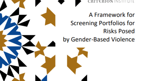 A Framework for Screening Portfolios for Risks Posed by Gender-Based Violence