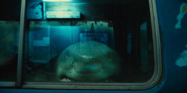 tubarão-rei-cr-o-esquadrão-suicida