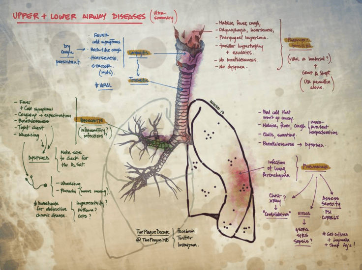 Plague - Upper and Lower Airway Diseases