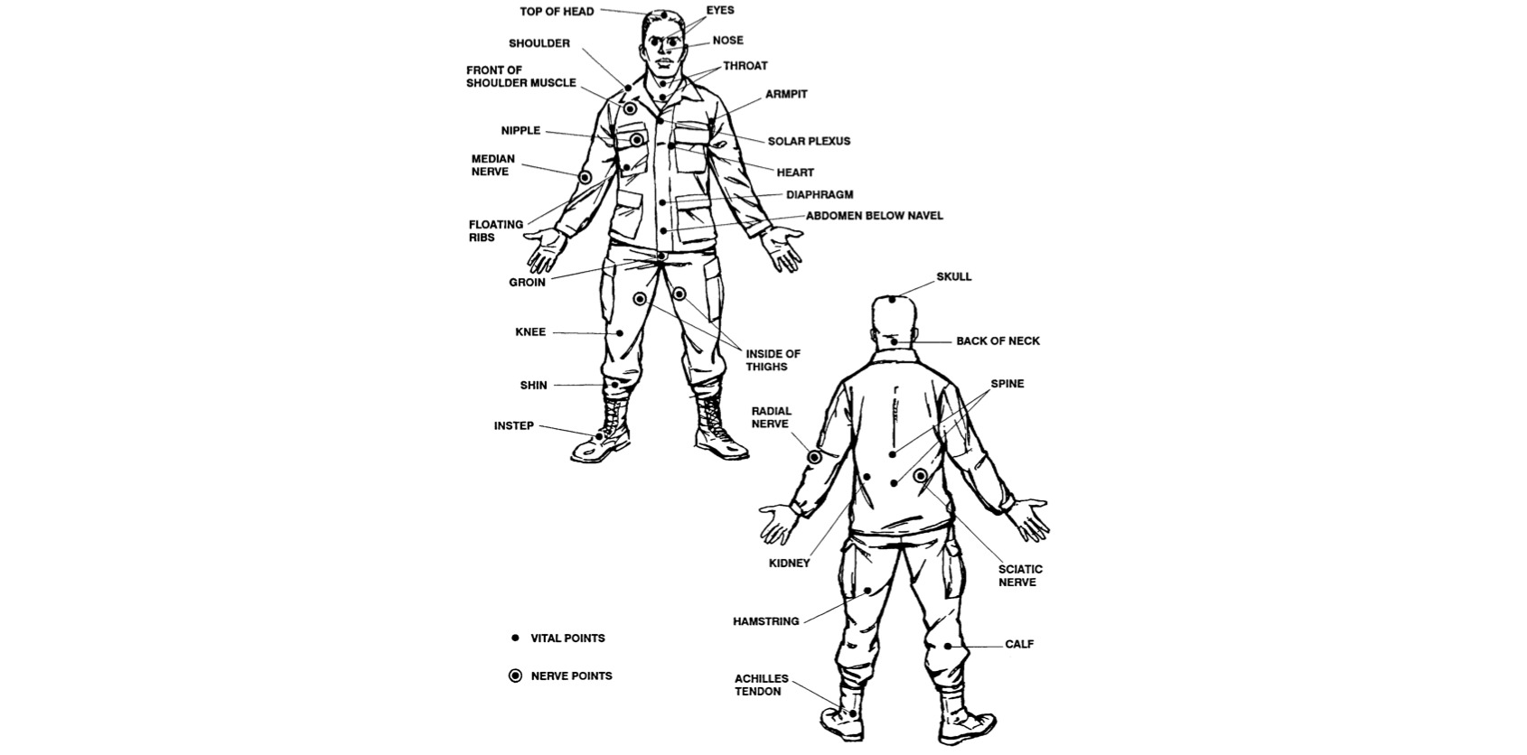 Basic Hand to Hand Self Defense : Vital Target Areas on