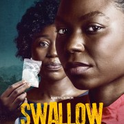Swallow-Nollywood