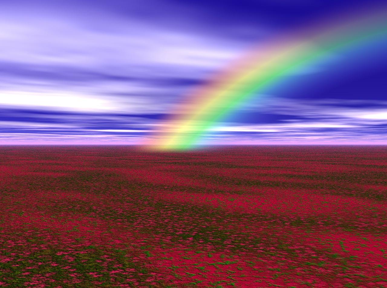 rainbow bridge poppy field Critter Caretakers Pet Services Pet Grief and Loss