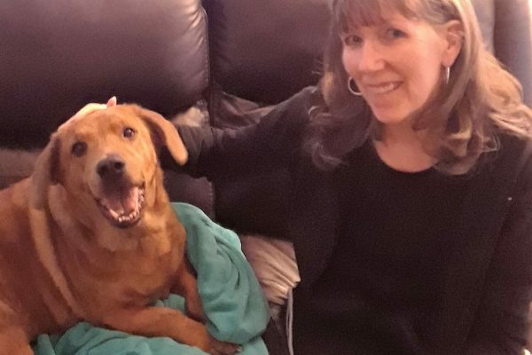 Kathy profile e1564769341821 Critter Caretakers Pet Services The Importance of a *Professional* Pet Sitter in Chandler