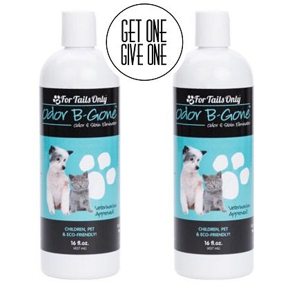 For Tails Only Odor B Gone Youngevity Critter Caretakers Pet Services Youngevity Odor-B-Gone For Tails Only