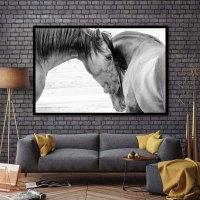 BANMU HD Printed Canvas Art Animal Horses Decorative Wall ...