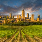 Vineyard covered hills of Tuscany,Italy, with San Gimignano in the background.