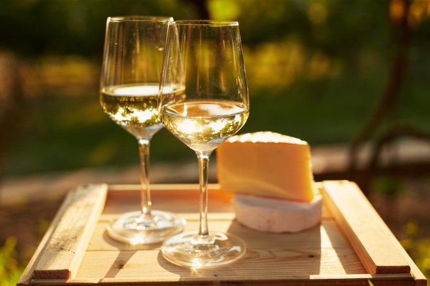 Two glasses of white wine with cheese