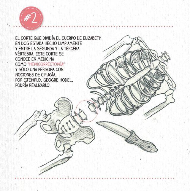 BasuraEspecial-Dalia-prueba2