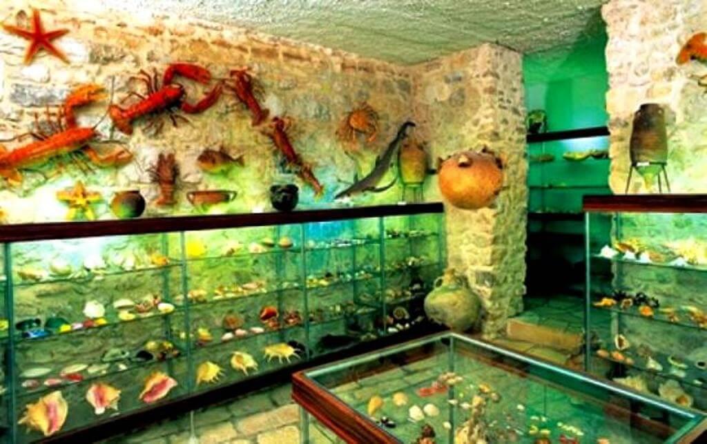 The Malacological Museum in Makarska
