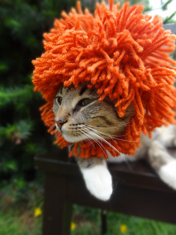 cat-hat-1