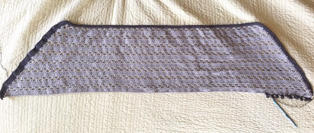 This shawl turned out beautiful, but the shawl in a bright color would be magnificent.