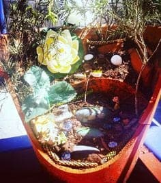 How to make a Fairy House with Succulents