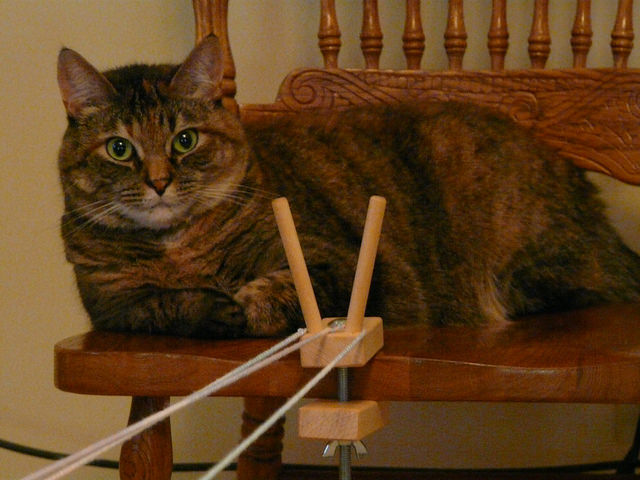 crochetbug, crochet, crocheted, crocheting, crafting tool, craft tool, stripes the cat, crafting cats