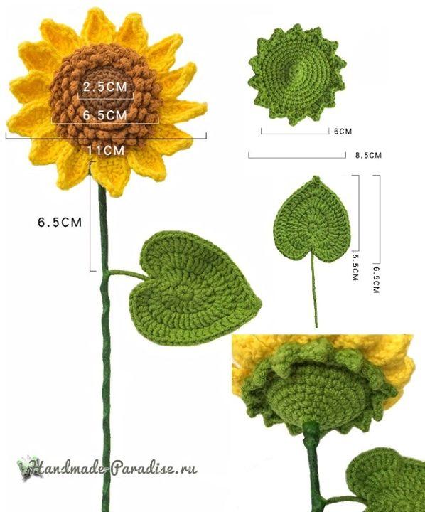 Sunflower Diagram : sunflower, diagram, Crochet, Sunflower, Diagram, Kingdom