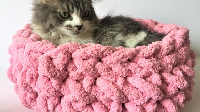 Crochet Cat Bed Pattern Free Hand Crochet A Cat Bed In 15 Minutes No Hook Needed 10 Off Youtube