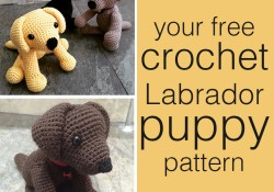 Crochet Dog Pattern Crochet Labrador How To Make Your Own Toy Dog The Labrador Site