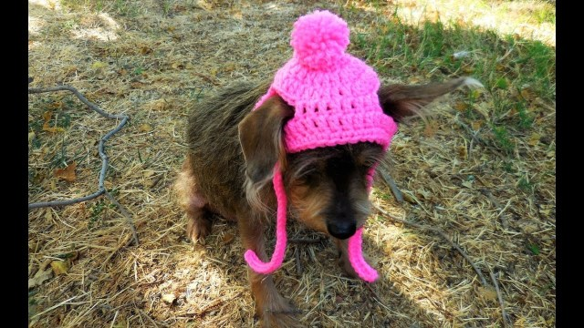 Puppy Dog Crochet Hat Pattern How To Crochet A Dogcat Hat Tutorial Sizexs Small Youtube