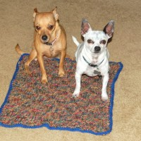 Dog Blanket ~ Basket Weave by Sara Sach of Posh Pooch Designs