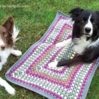 Granny Rectangle Dog Mat ~ Crochet Again