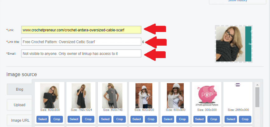 Instructional photo of how to fill up and what you need to add in when adding a link