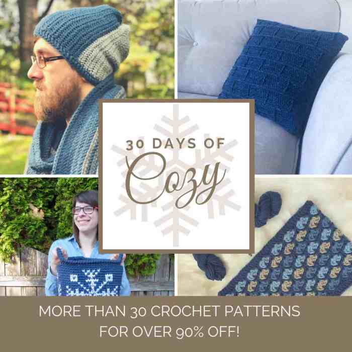 Collage of 4 sample crocheted items from the 30 Days of Cozy designed by various Crochetpreneur guest designers more than 30 crochet patterns available
