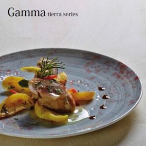 Gamma Tierra Series