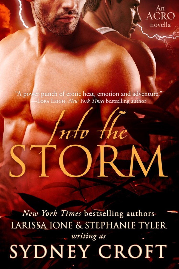 Into the Storm by Sydney Croft