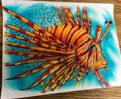 Lionfish. Pencil crayon on printer paper. 2017