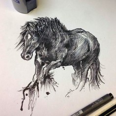 Dark horse. Copic and pencil crayon on printer paper. 2015