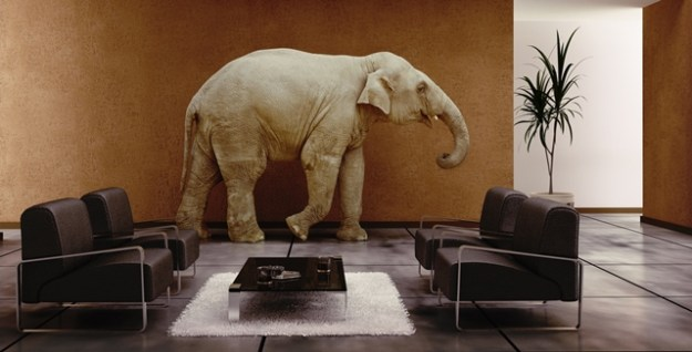 The elephant in the crofting cross-party room