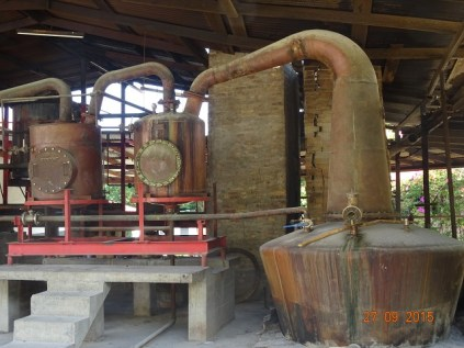 La distillerie de Rhum