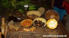 Escale à St Georges île de la Grenade présentation des épices