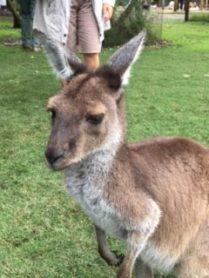Jacques Charles escale à Perth en Australie