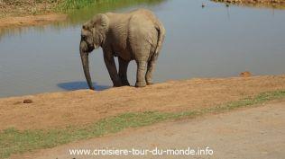 Croisière tour du monde 2019 Port Elizabeth en Afrique du Sud