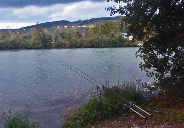 Rods in position in swim