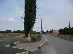 Pomérols - D161 (2)