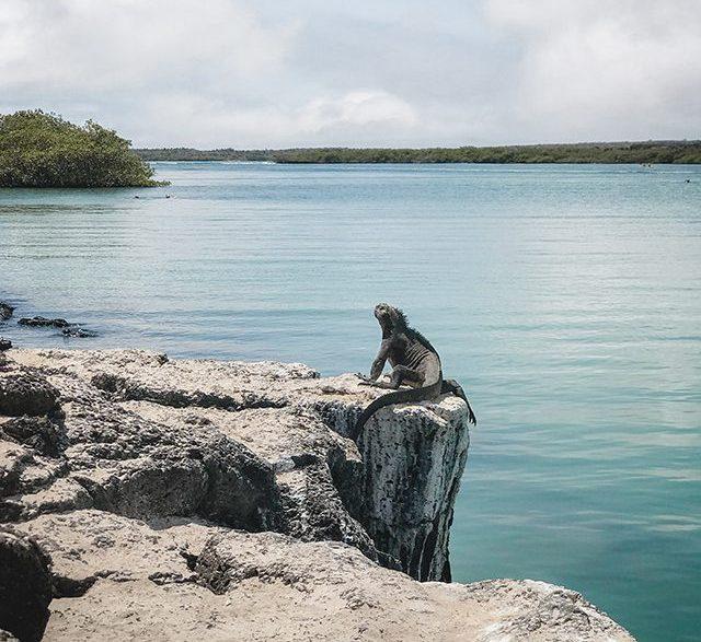 Lugares turísticos en Isla Santa Cruz, Galápagos.