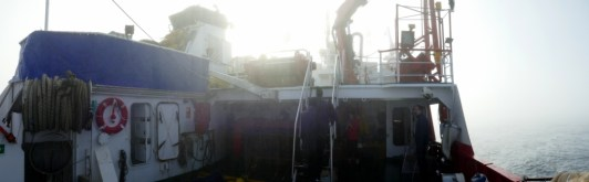 Niebla marina II