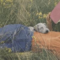 Octubre, mes de retos literarios