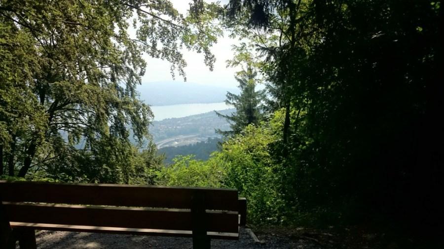 Banco con vistas al paraíso. Monte Üetliberg.